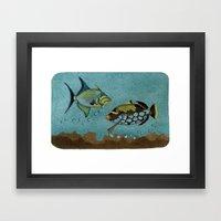 Trigger Fish Framed Art Print