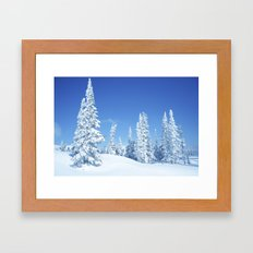 Winter 12 Framed Art Print