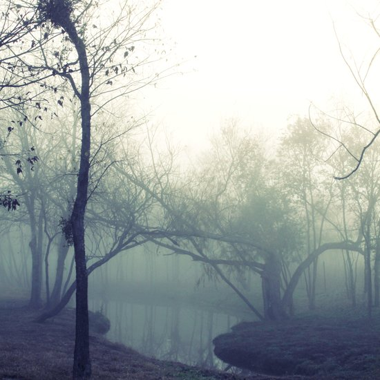 misty morning ... Art Print