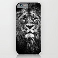 male asiatic lion iPhone 6 Slim Case