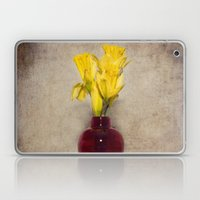 Daffodil Still Laptop & iPad Skin