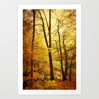 creek in the woods Art Print