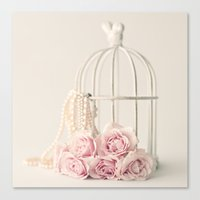 Rose Cage Canvas Print