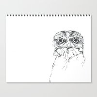 Grumpy Feathers Canvas Print