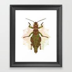 Mi pequeño saltamontes Framed Art Print