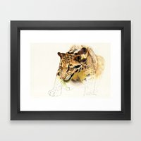 Clouded Panther Framed Art Print