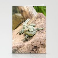 Lizard's Rest Stationery Cards