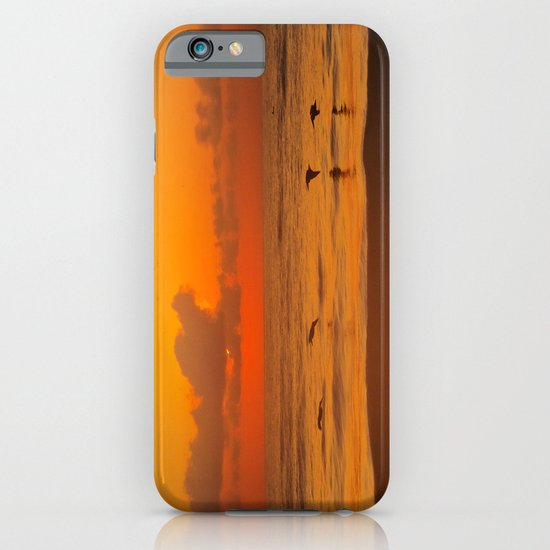 Four Pelican Sunrise iPhone & iPod Case