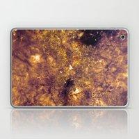 Transcendence Laptop & iPad Skin