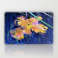 Summer Sky is touching Water Ground Laptop & iPad Skin