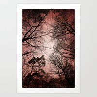 Silhouettes And Sky Art Print