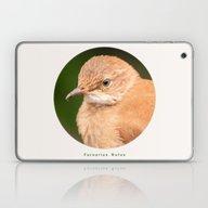 Laptop & iPad Skin featuring Brown Bird - Furnarius R… by Julio O. Herrmann