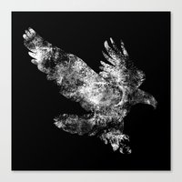Hawk Dive Canvas Print
