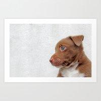 BABY DOG Art Print