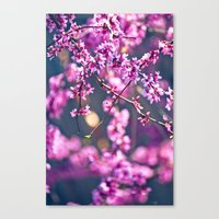 Spring Has Come 4 Canvas Print