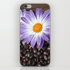 COFFEE & VIOLET DAISY  iPhone & iPod Skin