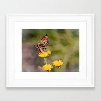 Butterfly Acrobats Framed Art Print