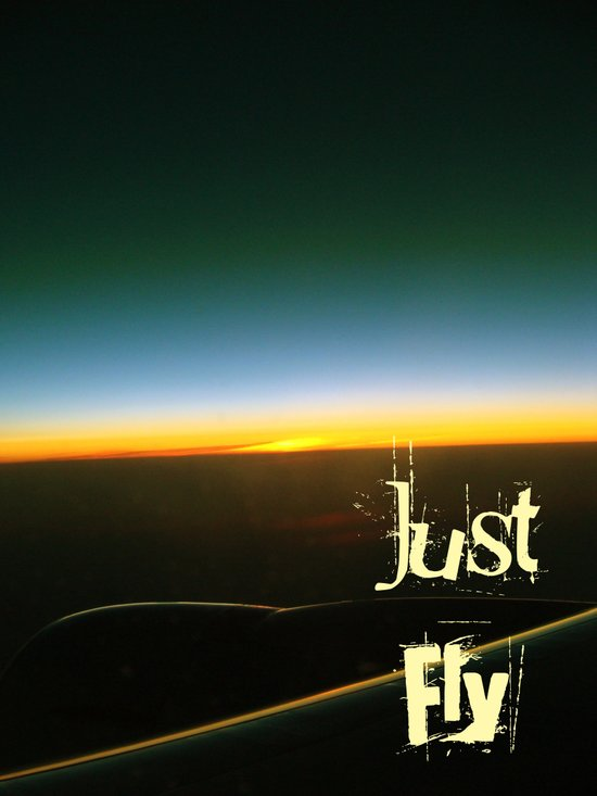 Just Fly Art Print