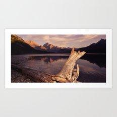 Alberta Driftwood Art Print