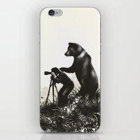 The Bear Encounter II iPhone & iPod Skin