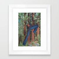 Sequoia Chic Framed Art Print