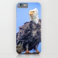 Eagle in Breeze iPhone 6 Slim Case
