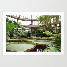 2009 - Winter Garden Art Print