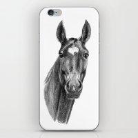 American Horse SK112 iPhone & iPod Skin