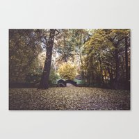 Magical garden Canvas Print