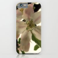 iPhone & iPod Case featuring Spring Romance by LariatsandLavender