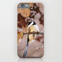 Birds :: Winter Chickadee iPhone 6 Slim Case