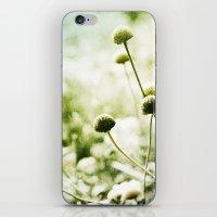 Retrospektiv iPhone & iPod Skin