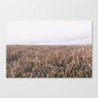 OPEN MOORE Canvas Print