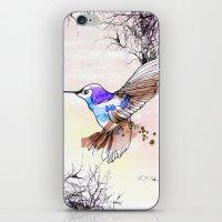 Humming Bird iPhone & iPod Skin