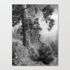 Listening Canvas Print