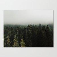 Stevens Pass Canvas Print