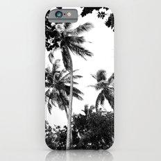 Tall Trees iPhone 6 Slim Case
