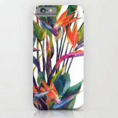 The bird of paradise iPhone 6 Slim Case