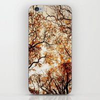 Woodland Trees iPhone & iPod Skin