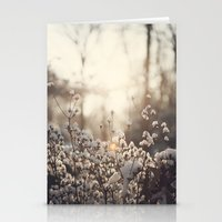 Northern Cotton Stationery Cards