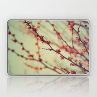 When Spring Was Autumn..… Laptop & iPad Skin