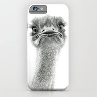 Cute Ostrich SK053 iPhone 6 Slim Case