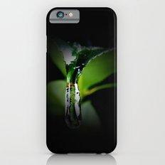Winter Leaf iPhone 6 Slim Case