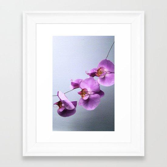 Ikebana Framed Art Print