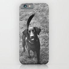 Dog 1 iPhone 6 Slim Case