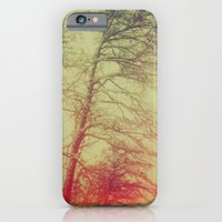 Passionate winter trees iPhone 6 Slim Case