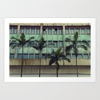 Palms in the city Art Print