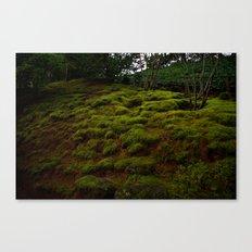 WINTER MOSS Canvas Print