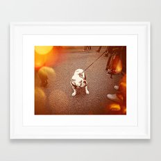 A Face in the Crowd Framed Art Print