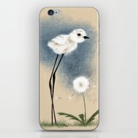 Snowy Stilted Plover iPhone & iPod Skin